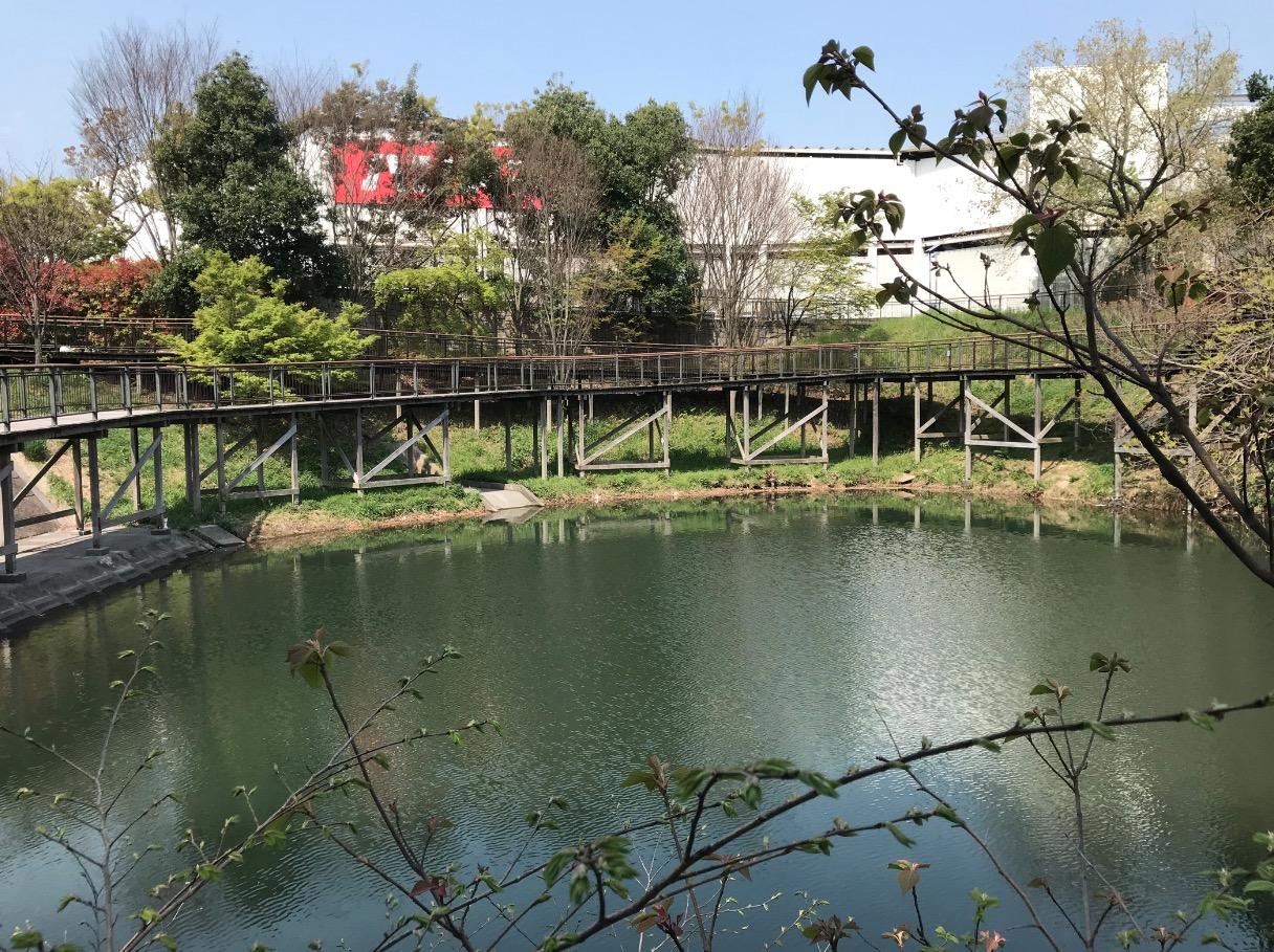 日の浦池と水辺の遊歩道(大野城市)