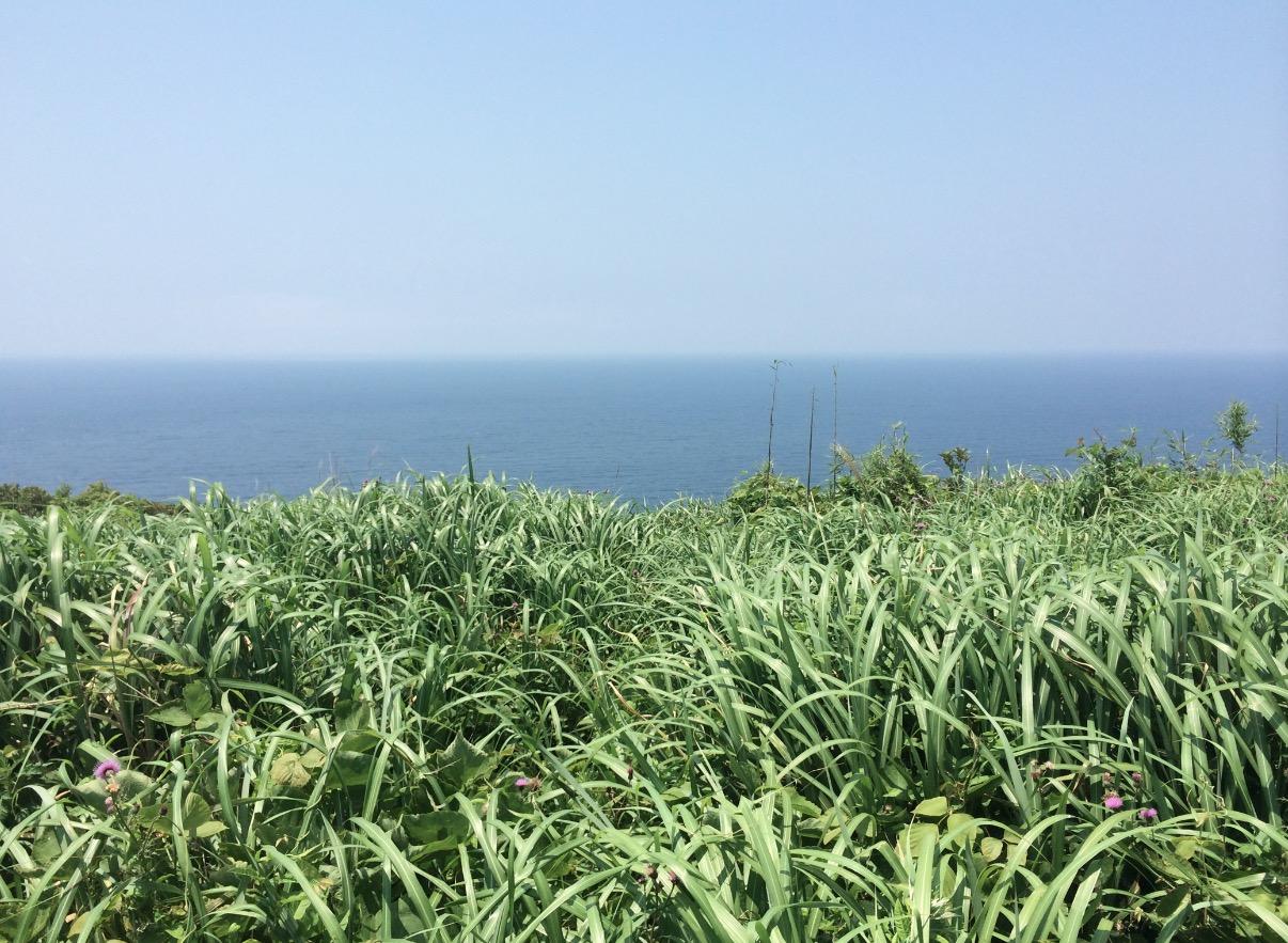 長瀬鼻灯台(生月)からの眺望