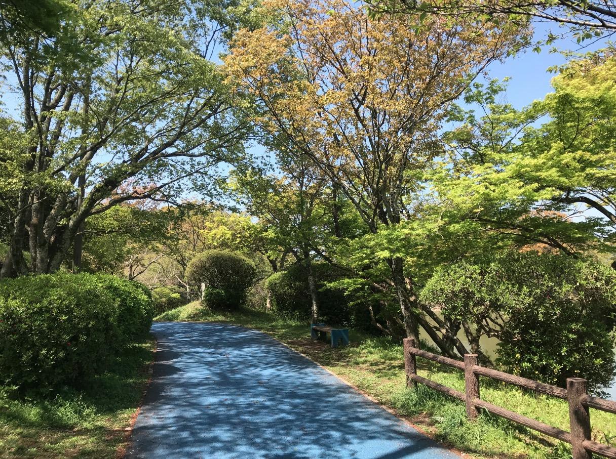 甘木公園のウォーキングコース
