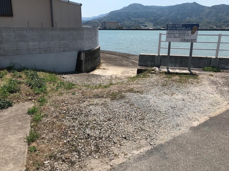 伊万里湾カブトガニ繁殖地の駐車スペース