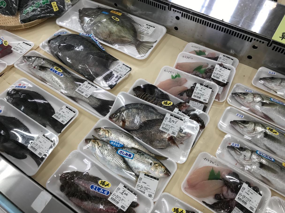福ふくの里で販売されている新鮮な魚