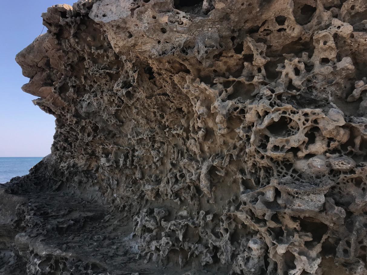 夏井ヶ浜はまゆう公園の岩礁