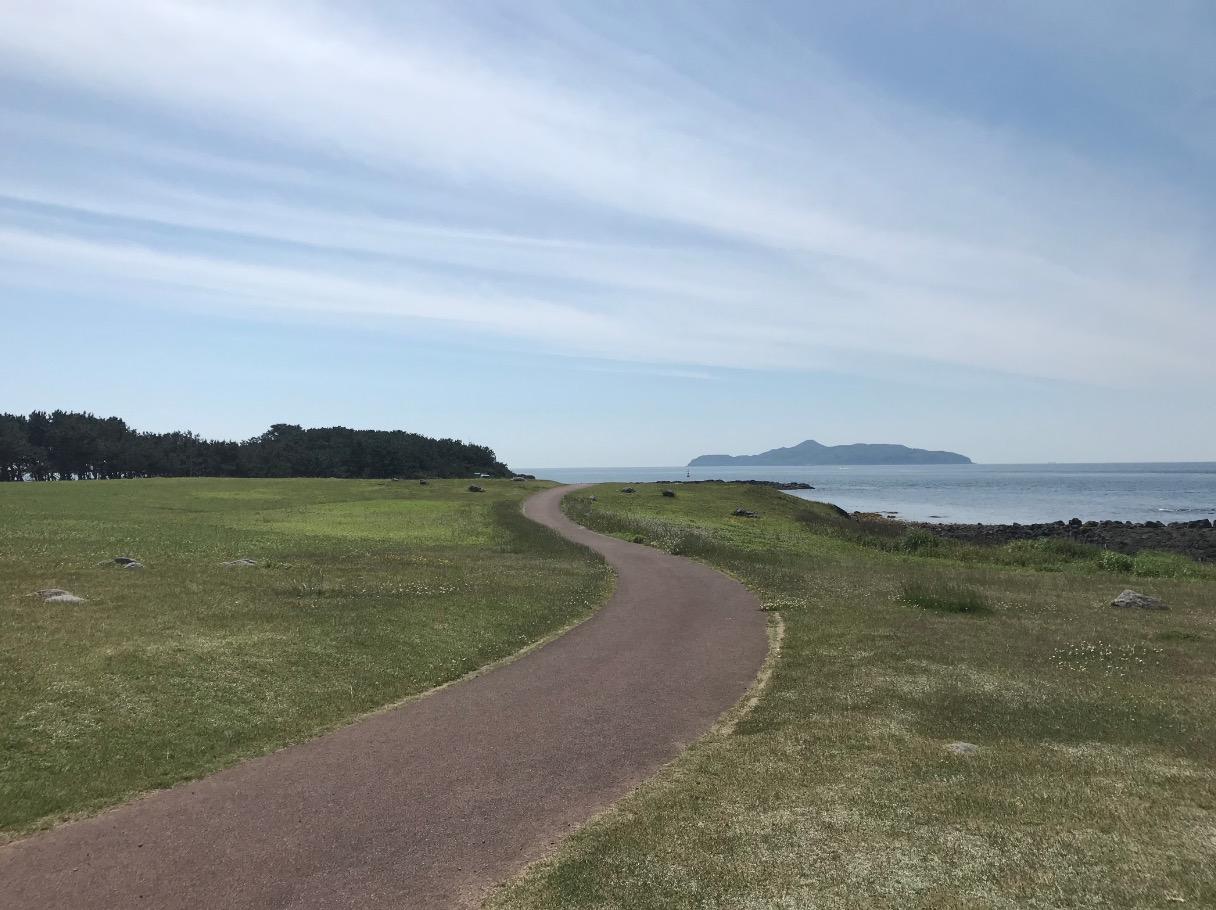 波戸岬に広がる草原