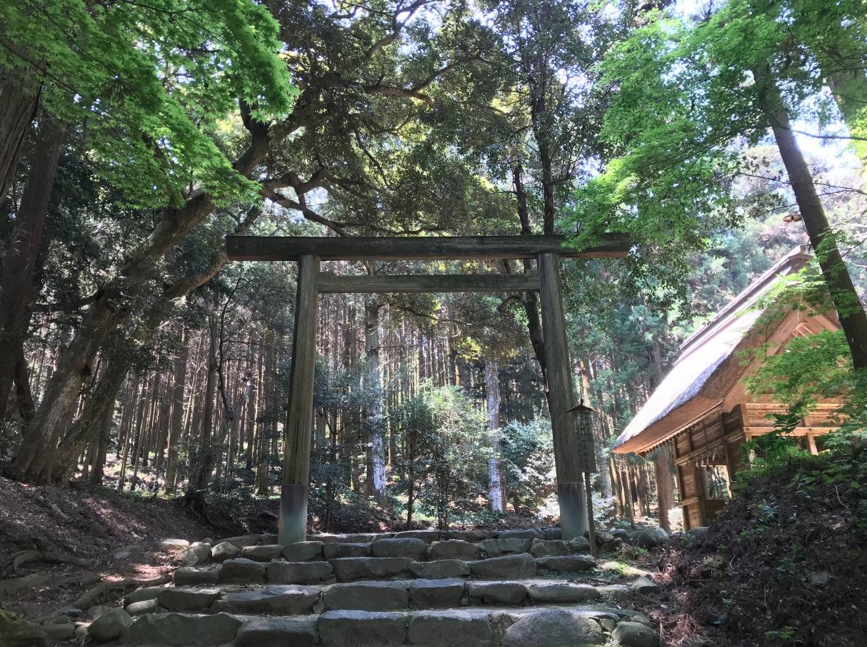 櫻井大神宮の鳥居