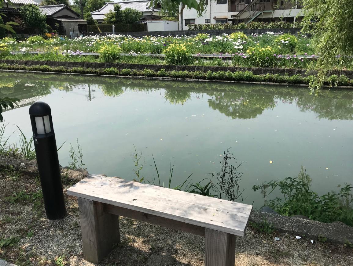 椛島菖蒲園(柳川市)の対岸の散歩道にはベンチも