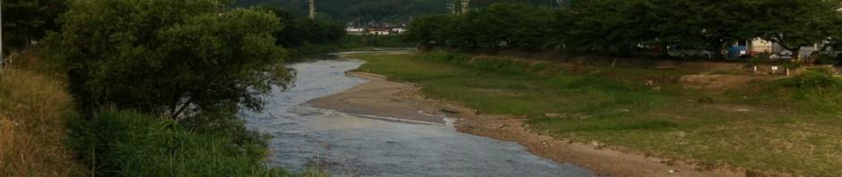 カワセミのいる那珂川