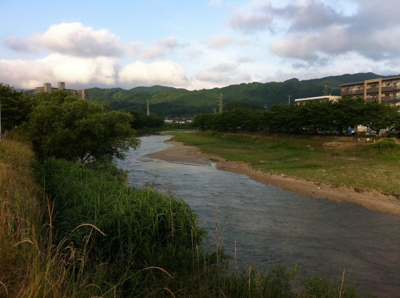 カワセミがいる川