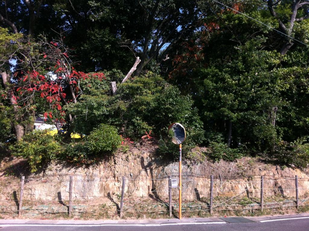儺国の丘の間違い探し:須玖岡本遺跡平若地点