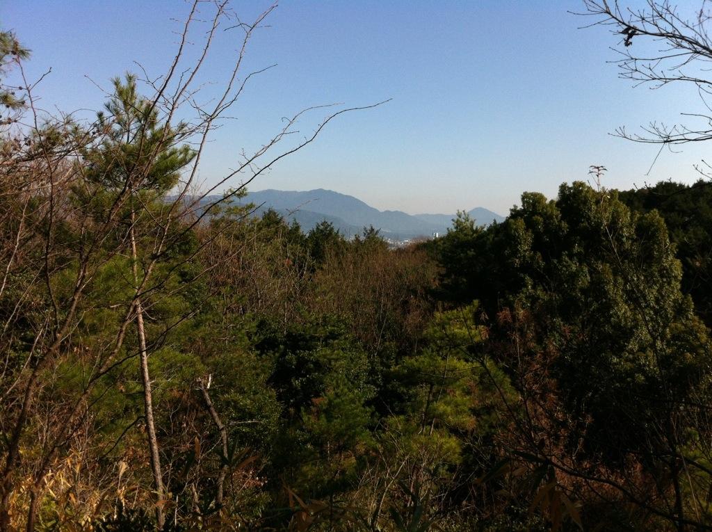 観音山から石割山へ(那珂川町)