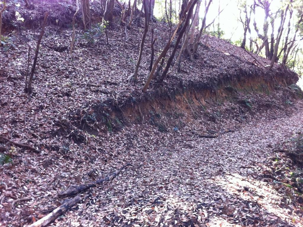 エゲ平石線