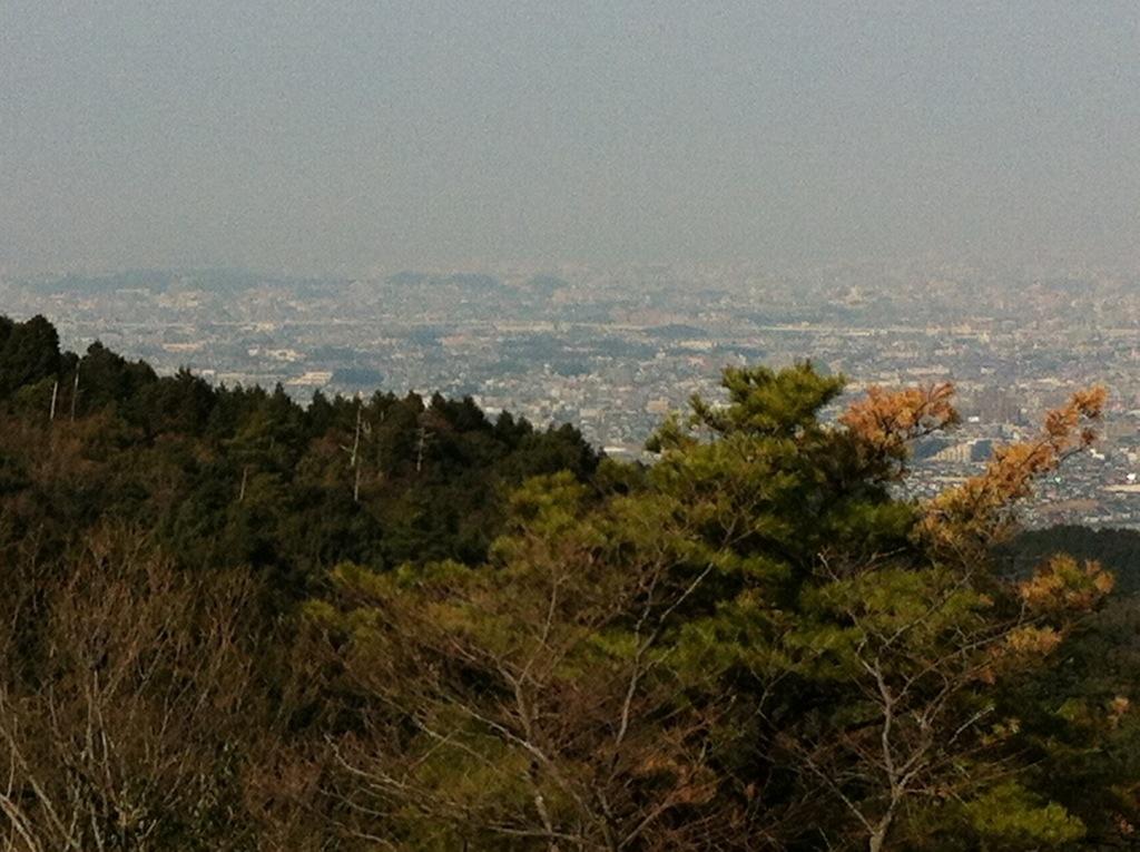 矢岳(那珂川町)頂上