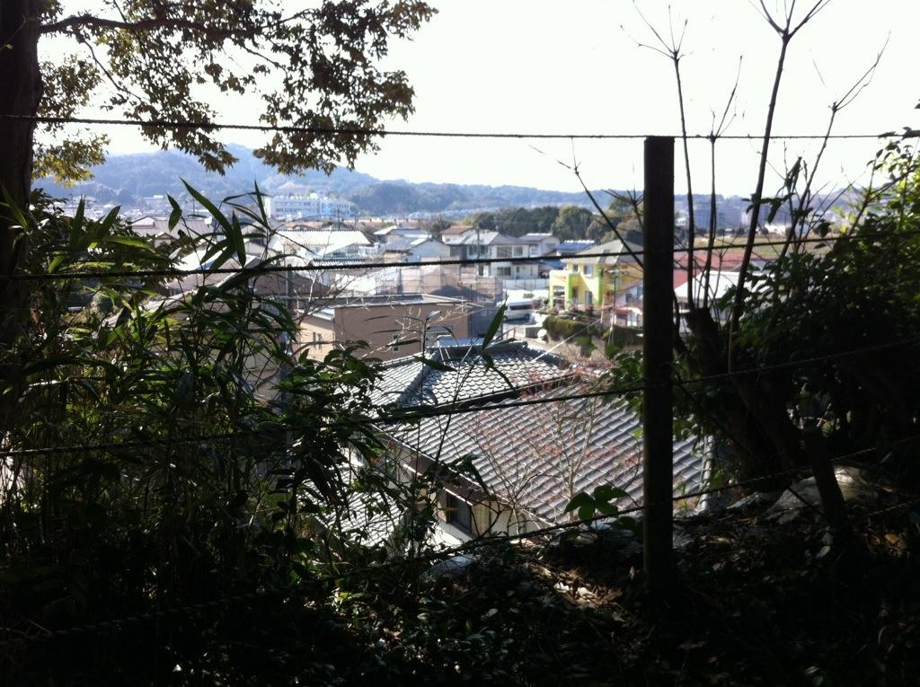 暮らしを見守る奥宮の聖帝:平野神社・3(奥宮)
