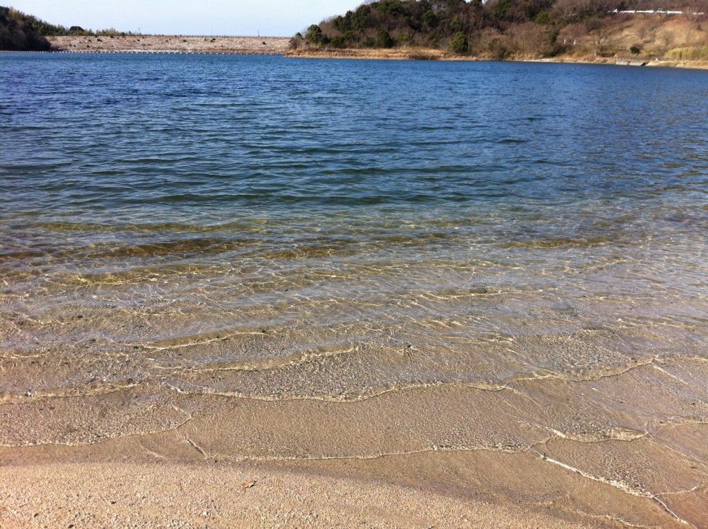 癒しを希う森の水辺:牛頸ダム・2(いこいの森水辺公園)
