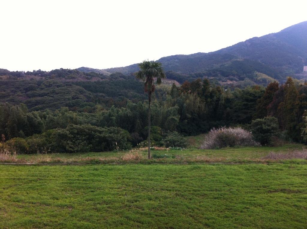 風景は大河のゆりかご:景石神社・2