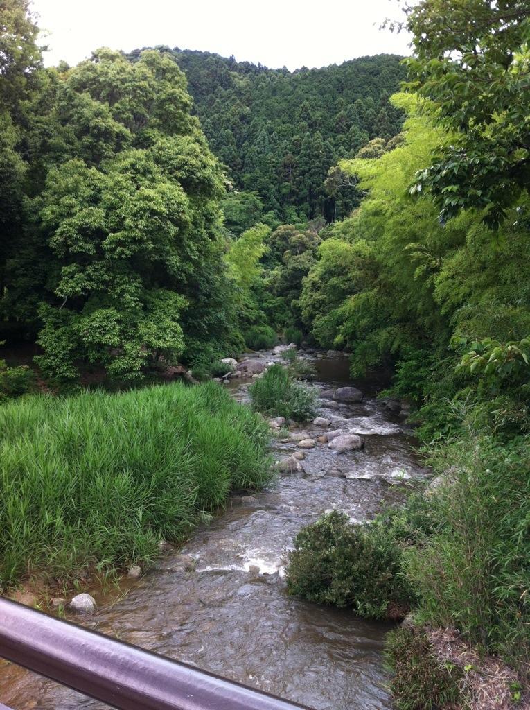 中ノ島公園(那珂川町)橋の上から下流を見る
