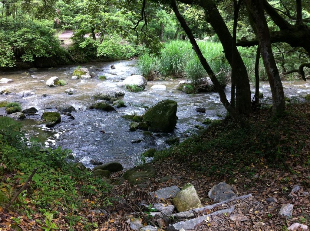 日吉の森(那珂川町)