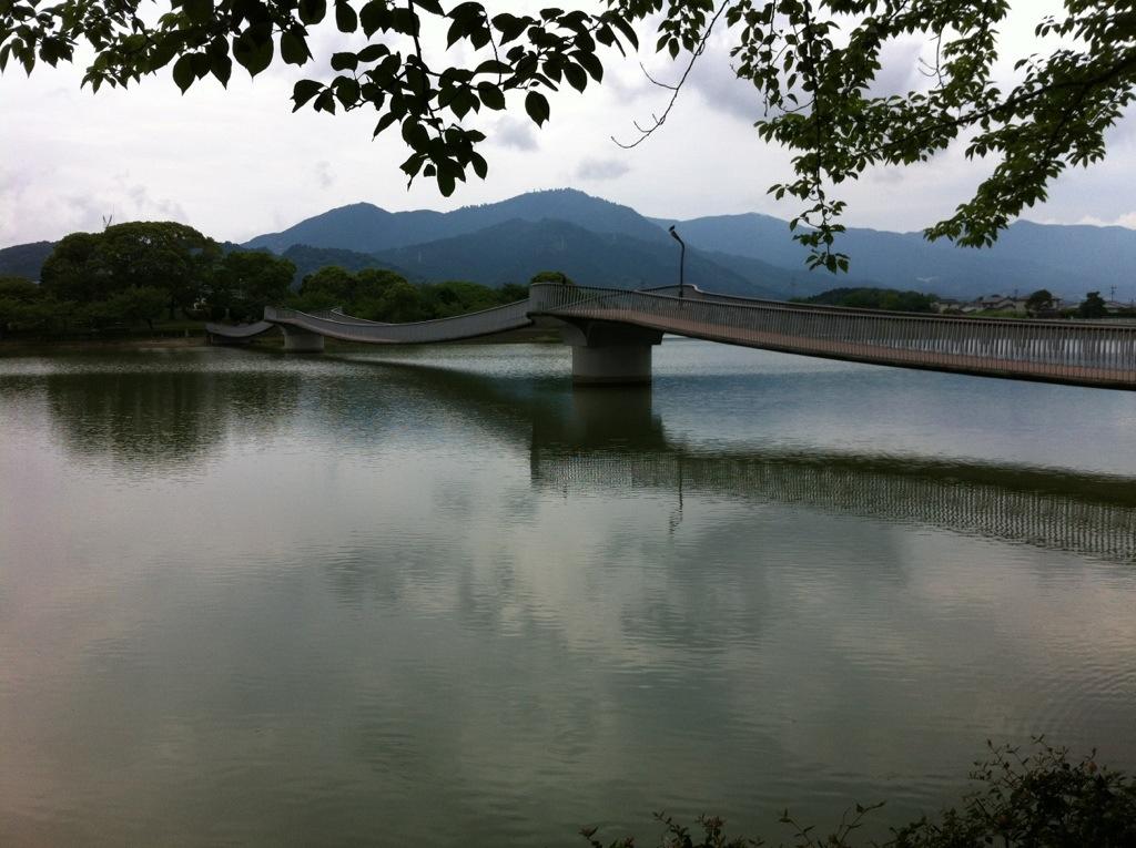 駕与丁公園の水鳥橋