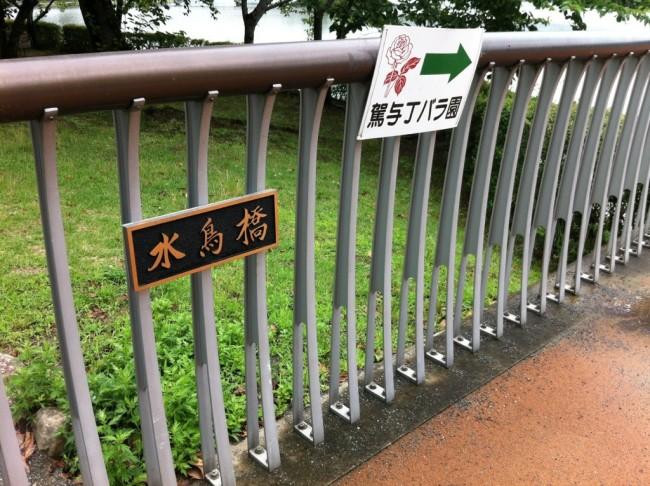 どよん、ゆらん、ゆらゆらん:駕与丁公園・4(水鳥橋)