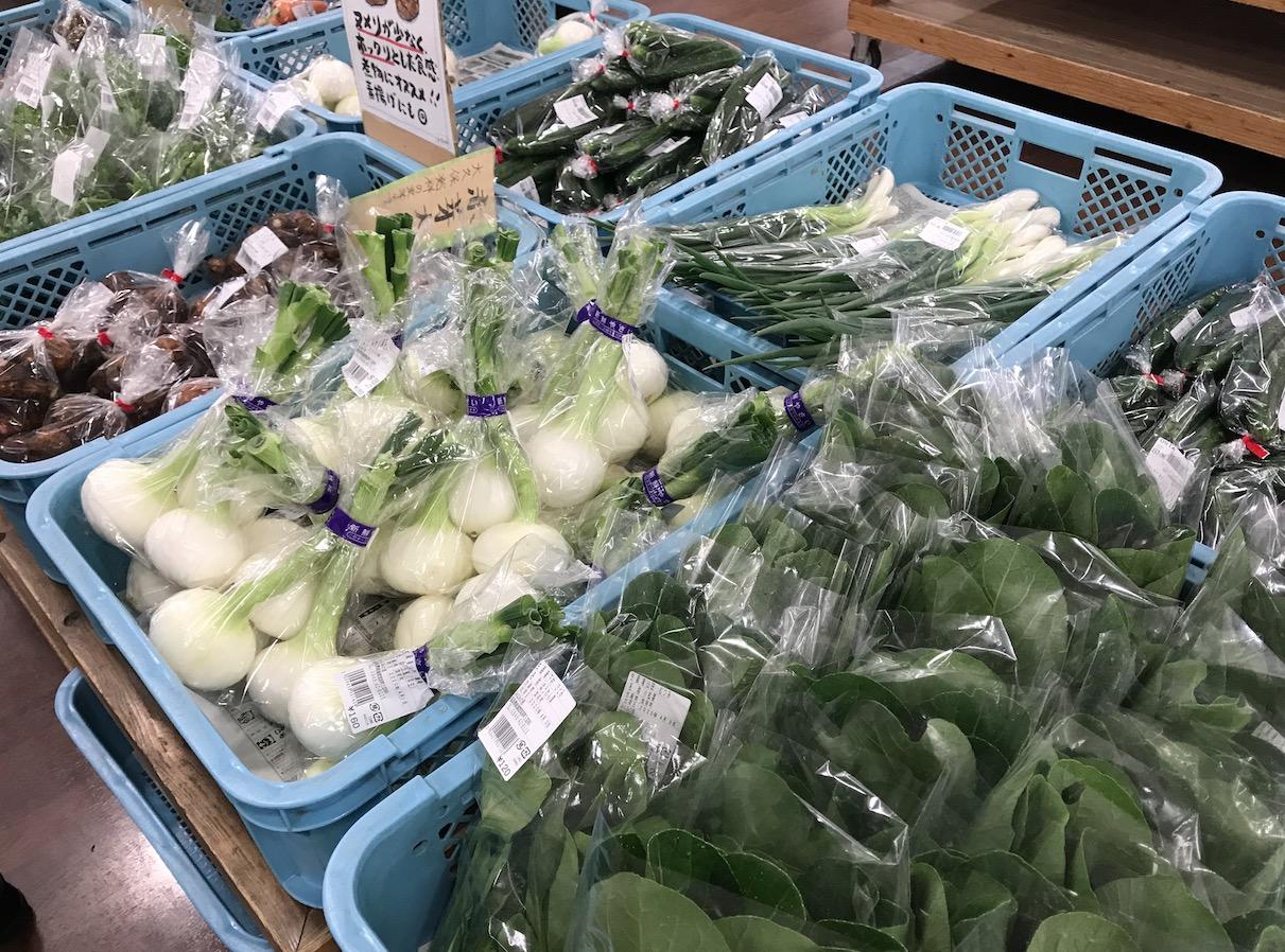 みなみの里に陳列された野菜