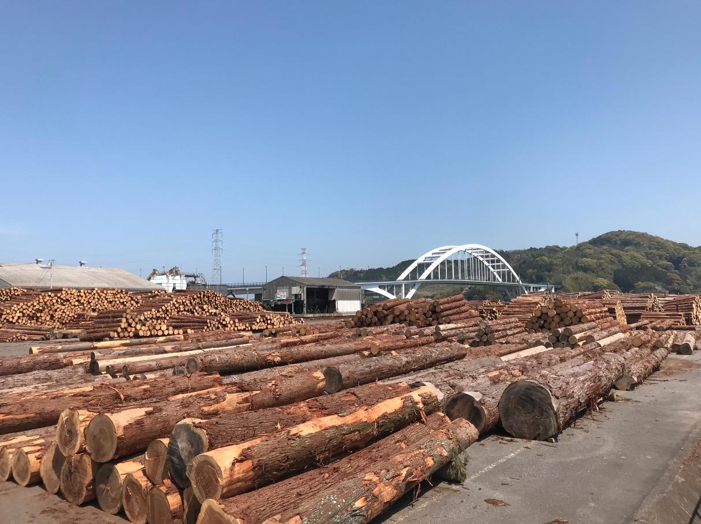 伊万里湾大橋と木材コンビナート