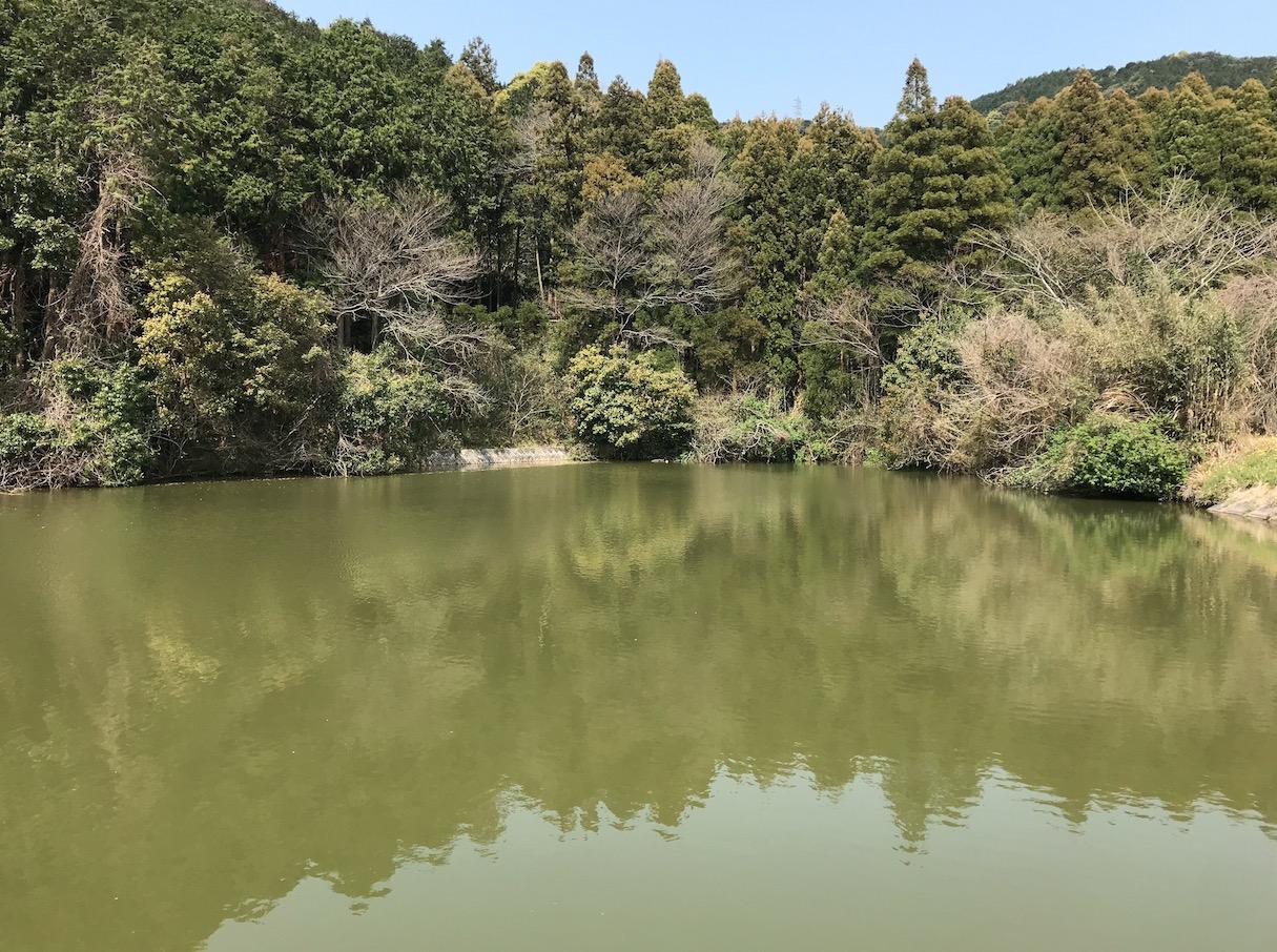 仙道古墳公園の奥のため池