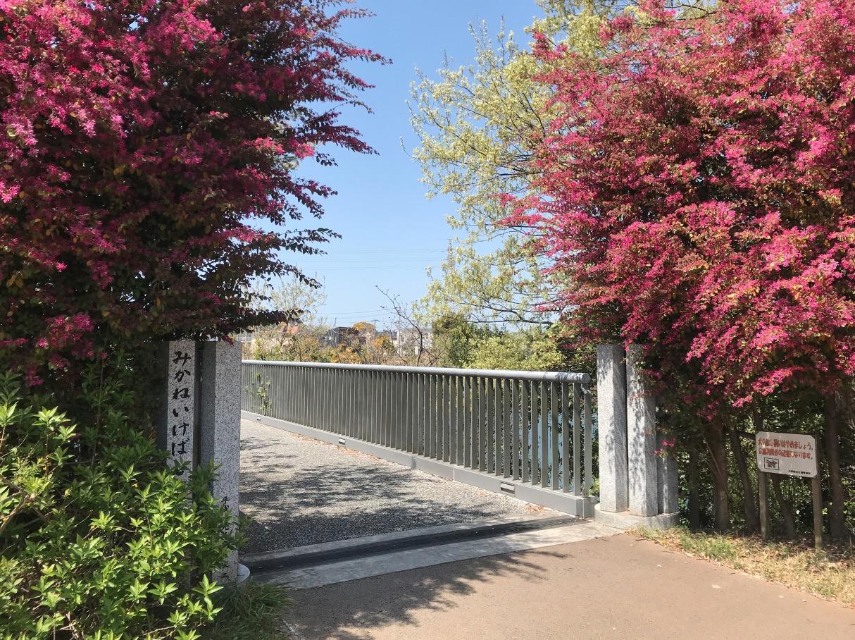 三兼池橋の入り口
