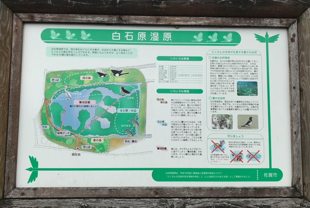 白石原湿原(佐賀市)