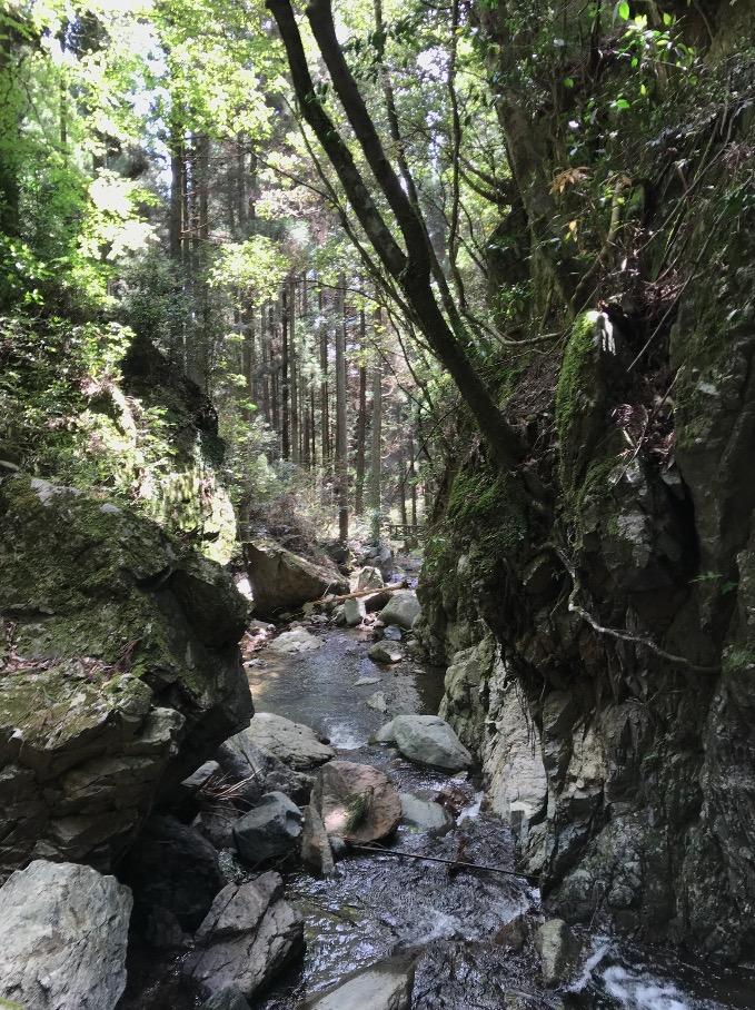 魚返りの滝(うきは市)から下流を望む