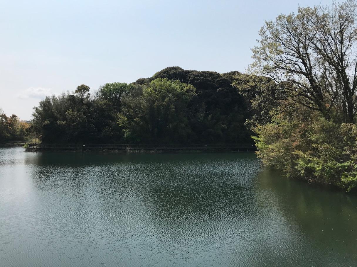 日の浦池(大野城市・福岡)