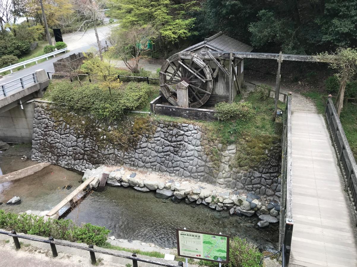 白糸の滝の周囲(糸島)