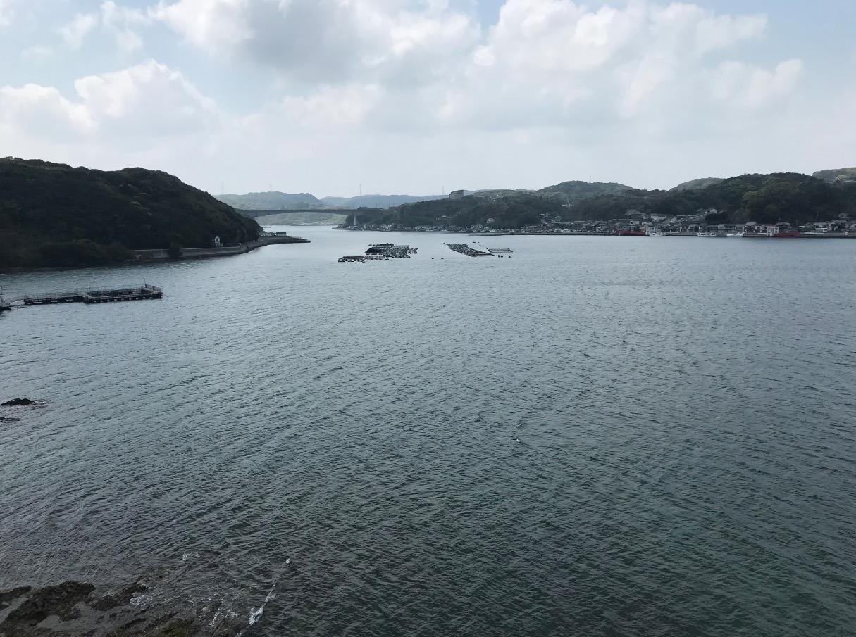 呼子大橋からの眺め