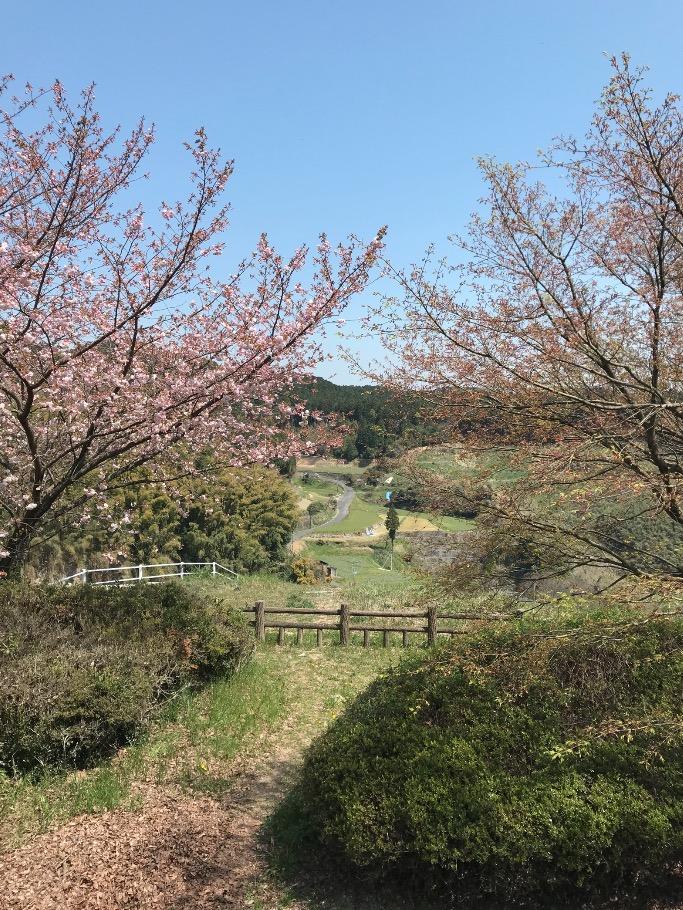 山神ダム展望所からの眺め