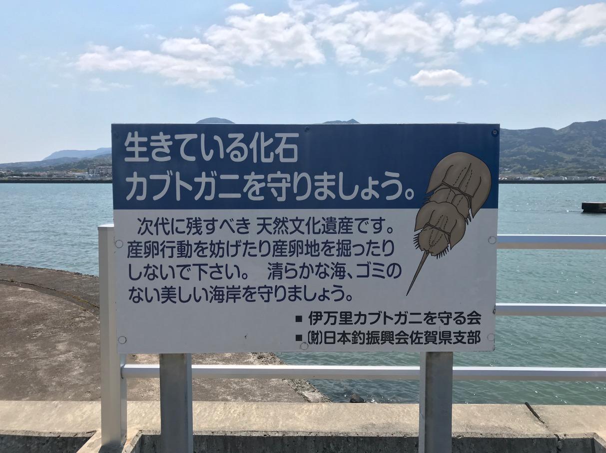伊万里湾カブトガニ繁殖地の看板
