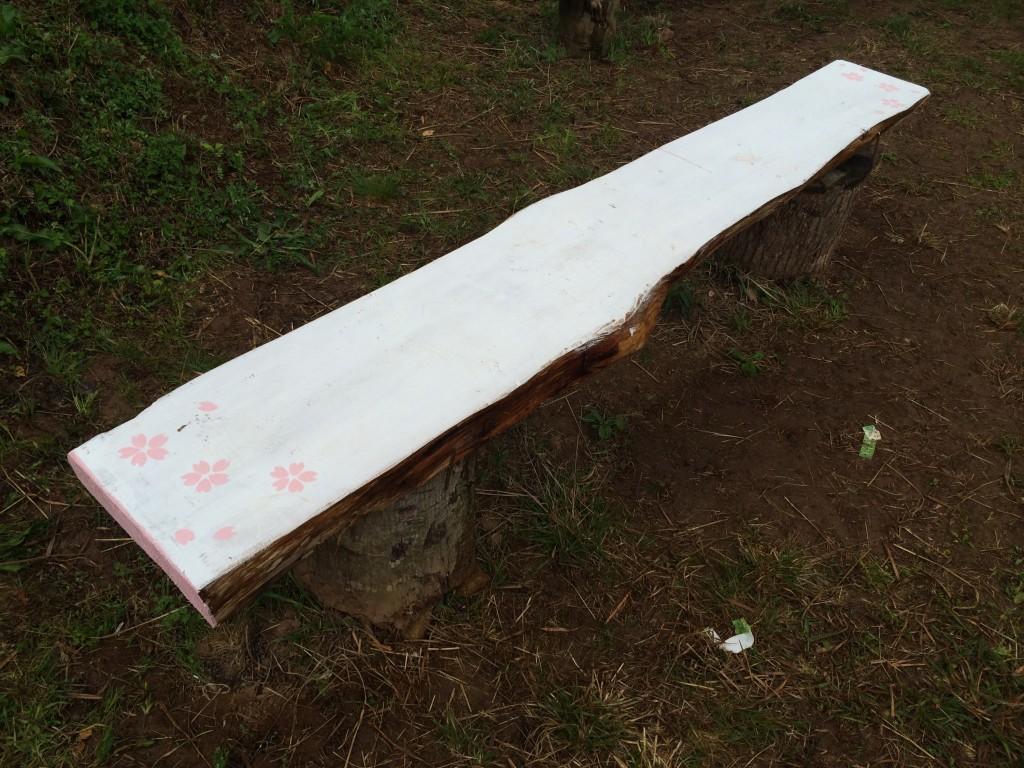 慈眼桜のベンチ